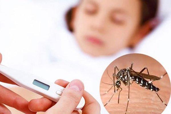 Sốt xuất huyết là bệnh truyền nhiễm thường gặp