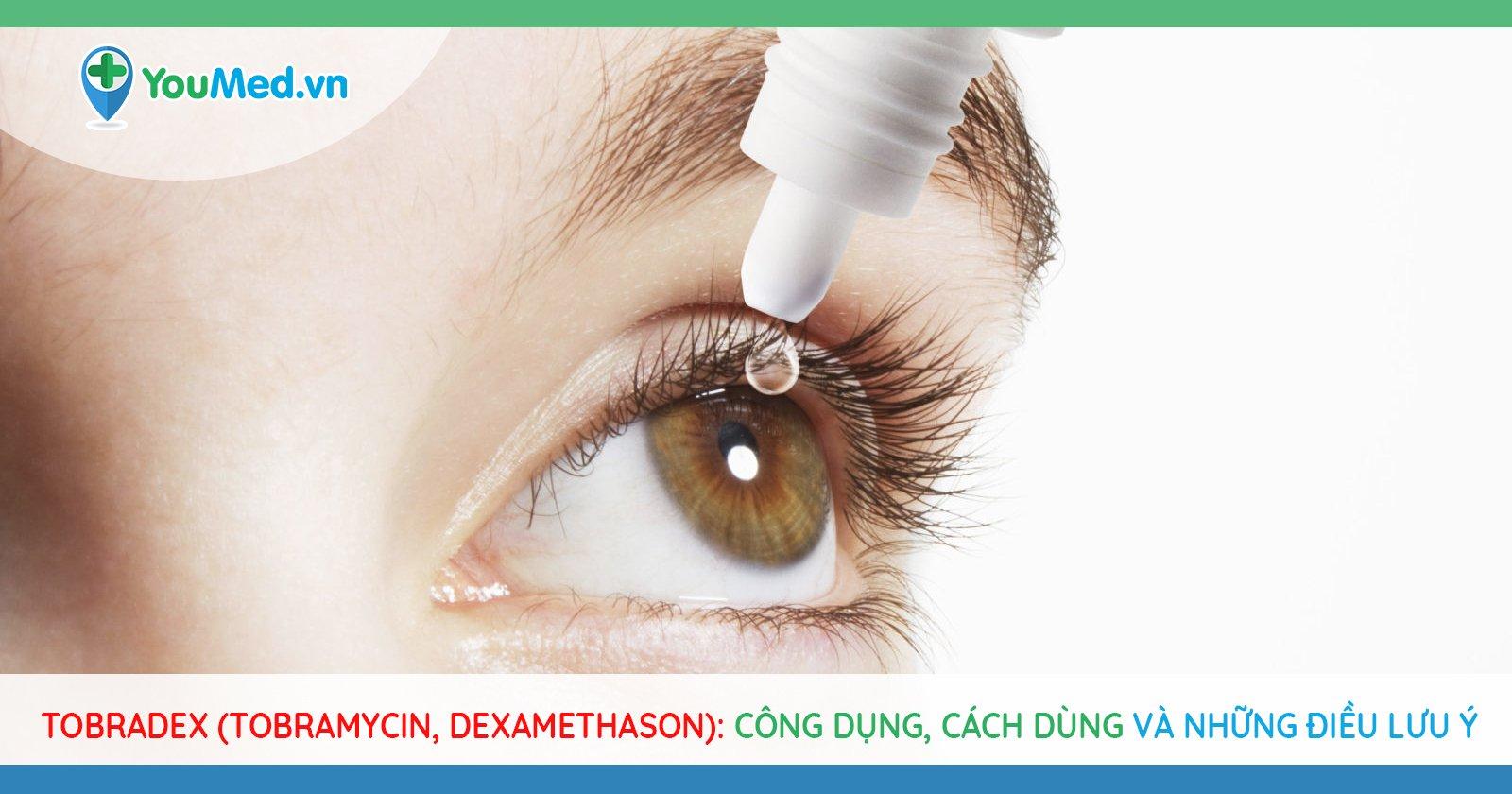 Tobradex (Tobramycin, dexamethason): Công dụng, cách dùng và những điều lưu ý