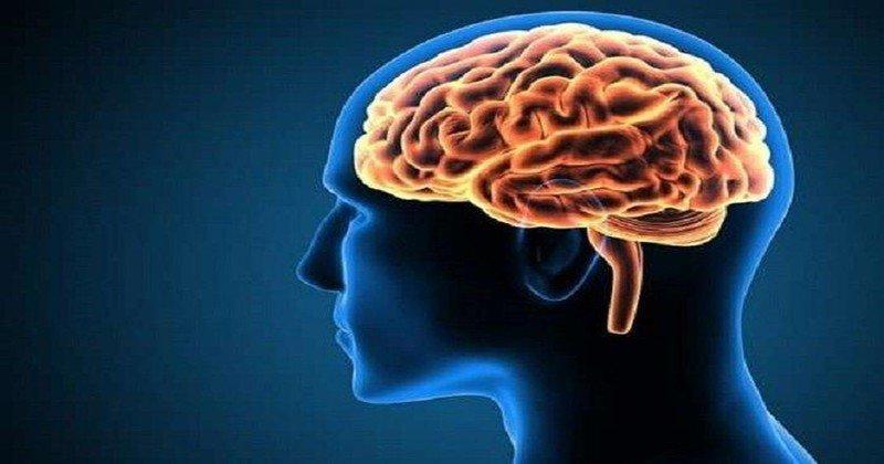 Thuốc Nootropyl (piracetam) tác dụng như thế nào tới não bộ?
