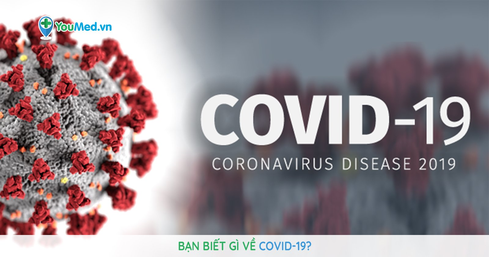 Bạn biết gì về COVID-19?