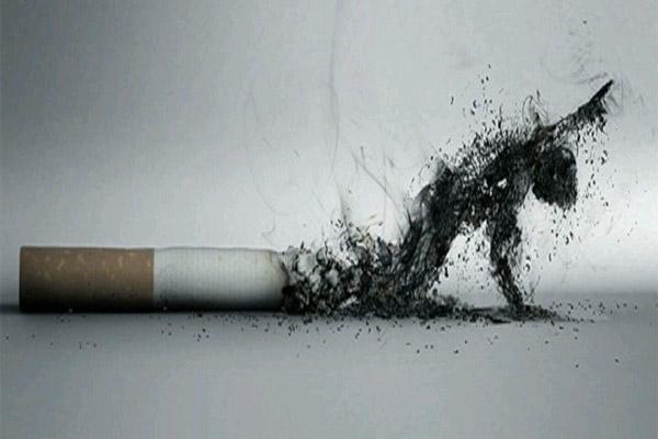 Thuốc lá gây hại cho sức khỏe